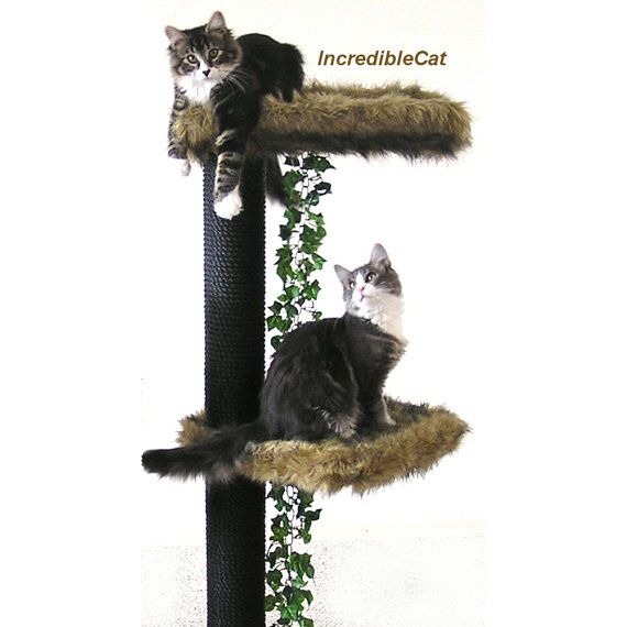 DESIGNER CAT Furniture SALE 4u0027 Cat Tree Luxury Cat Beds Unique Custom Cat  Trees Condos
