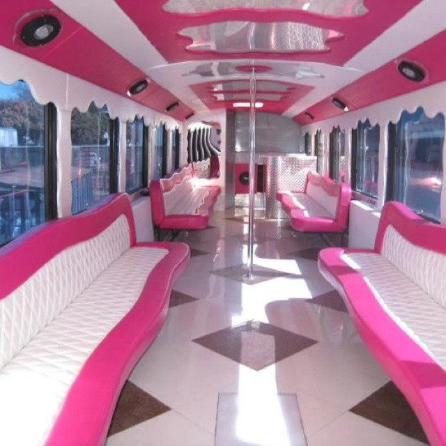 12 Best Images About Pole On Pinterest Limo Swarovski Crystals And Amazing Bunk Beds