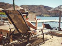 """Looking for a good book to take on your next vacation. """"David Sedaris Tells You What to Read This Summer."""""""