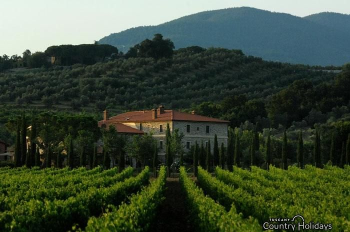 Accommodation Il Poggiarello at Roccastrada (Grosseto) - Tuscany Holidays