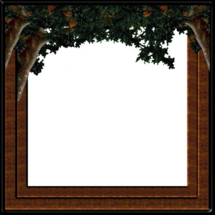 Latestframes: frames