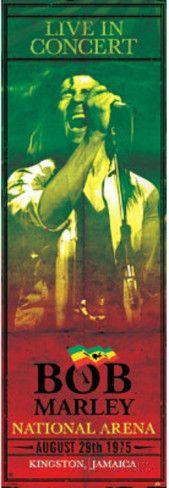 Bob Marley Concert Kingston Jamaica Music Door Poster Door Poster
