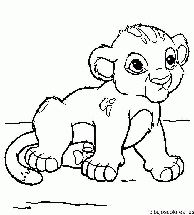 Simba bebé