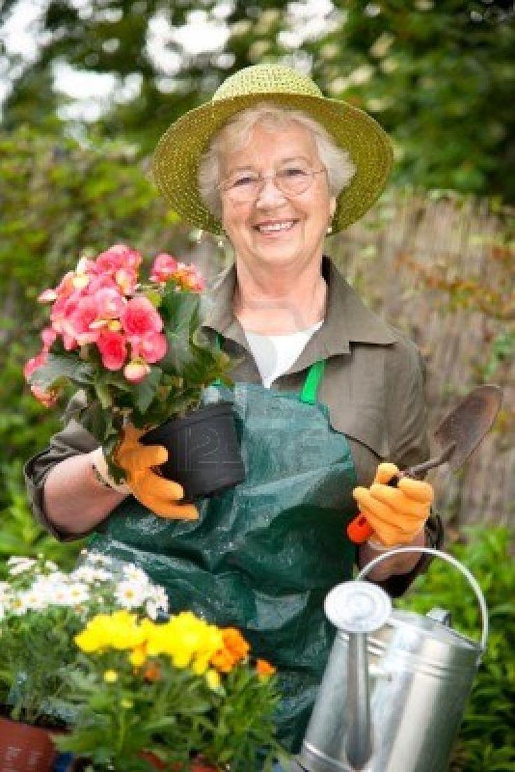 17 Best Images About Jardineria On Pinterest Gardens