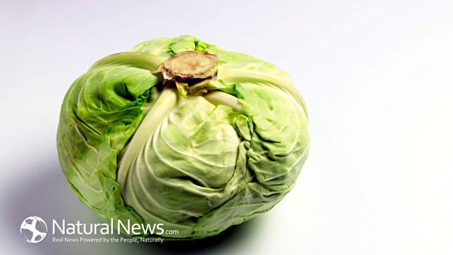 Stomach ulcers:  How cabbage, fresh or juiced, heals h. pylori ulcers, increases stomach circulation.  Other aids as well.  Great article to share and to print.