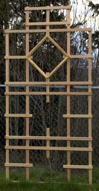Best 25 Wood trellis ideas on Pinterest Trellis ideas Trellis