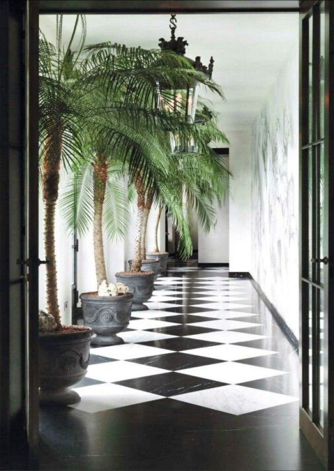 25 Best Ideas About Checkered Floors On Pinterest Black
