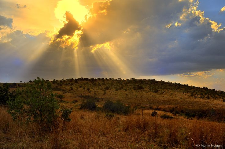 """https://flic.kr/p/A7JJje   Cradle of Humankind Sunset   The sun sets over the """"Cradle of Humankind"""", close to where the Homo naledi fossils were found (an UNESCO Word Heritage Site, Kromdraai, South Africa)."""