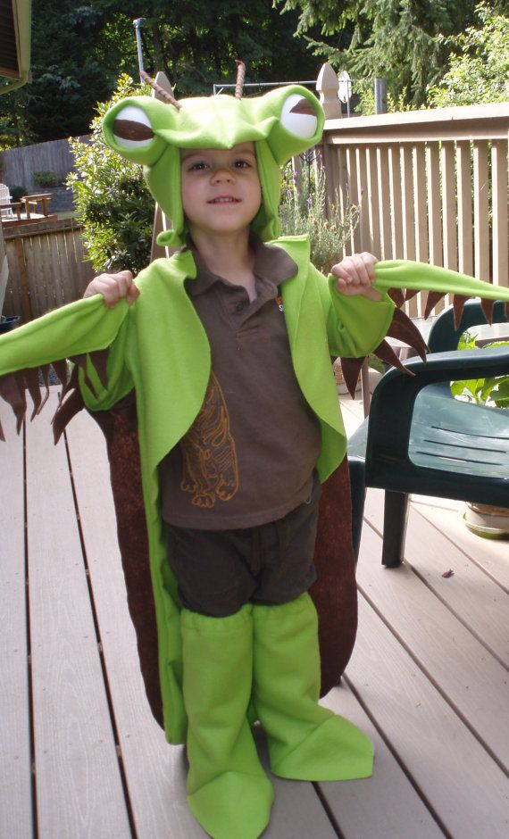 how to make insect costume at home