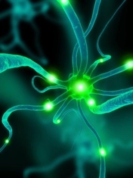 neuron-sinapsi