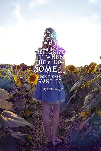 Alice in wonderland. Cheshmire Cat quote.
