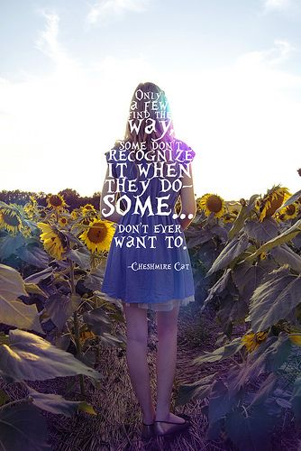 Alice in wonderland. Cheshmire Cat quote.