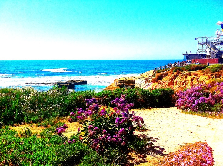 Take me back...La Jolla Beach, San Diego
