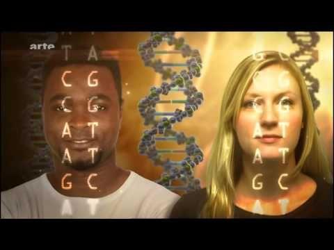 Le décryptage du génome humain : Espoir ou menace ? - YouTube