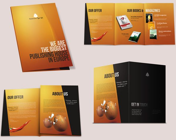 1000 images about brochure design on pinterest tri fold for Great brochure templates
