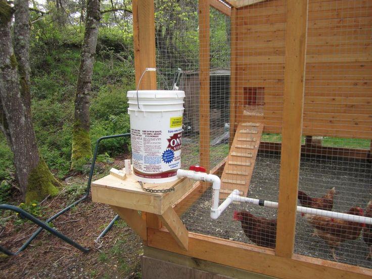 My First Chicken Coop - BackYard Chickens Community - nipple water dispenser