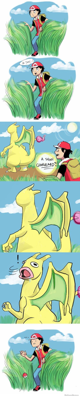 Damn Pokemon Fusions!