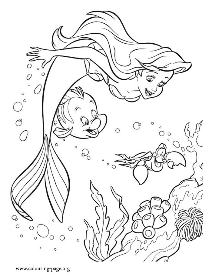 Activity Flounder Ariel And Sebastian Coloring Pages