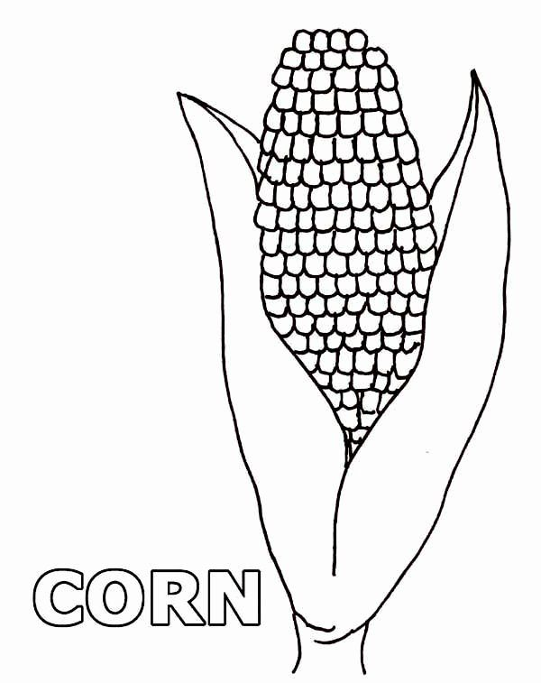 24 Corn On The Cob Coloring Page In 2020 Coloring Pages For