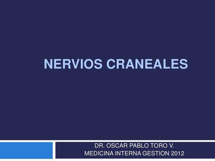 3. pares craneanos by Oscar Toro Vasquez via slideshare