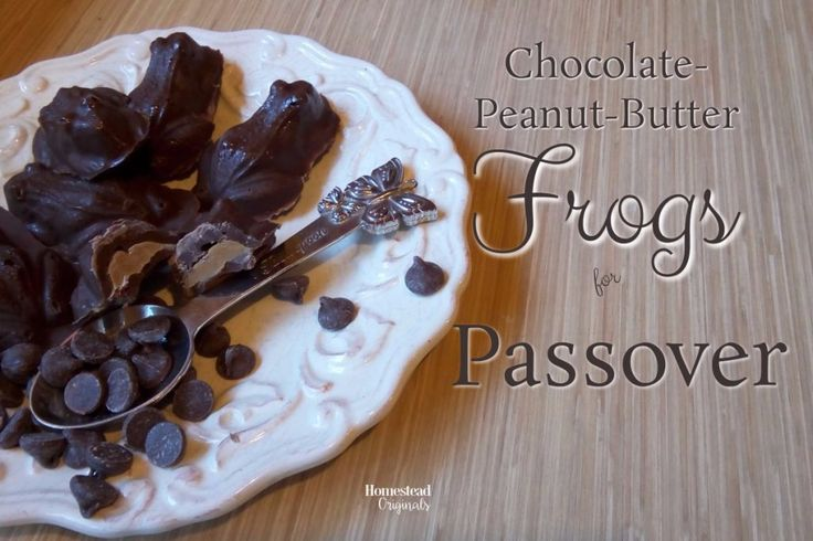 Homemade Chocolate Peanut Butter...Frogs