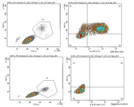Anti-IL6 Antibody in FCM (cat. nr 209-301-310S by Rockland from tebu-bio) - Tips & tricks in flow cytometry