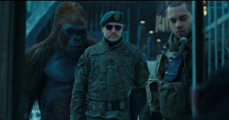 """Watch Dire New 'War for the Planet of the Apes' Trailer: """"There are times when it's necessary to abandon our humanity to save humanity,"""" Woody Harrelson's Colonel character declares, setting the dire tone of the new official trailer for War for the Planet of the Apes.In the latest clip for Matt Reeves' third installment of the Planet of the ApesThis article originally appeared on www.rollingstone.com: Watch Dire New 'War for the Planet of the Apes' Trailer…"""