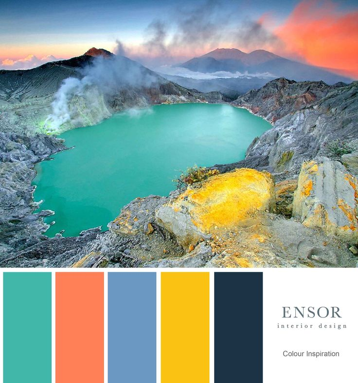 make a statement, go for bright bold colours. #color #coral #navy #nature #interiordesign #ensor www.ensorinteriordesign.co.uk