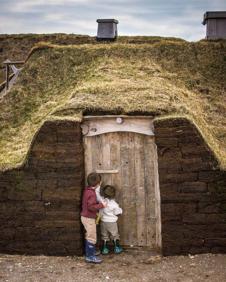 Newfoundland l'Anse aux Meadows - Who's Home?