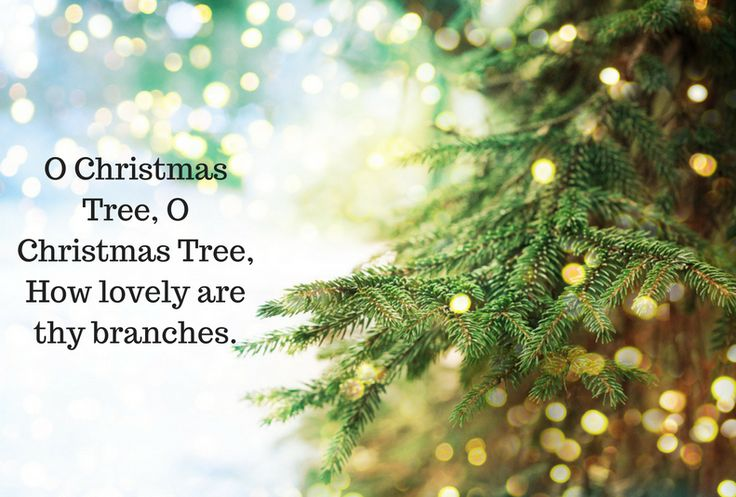 Christmas Tree quote: O Christmas Tree, O Christmas Tree, How lovely are thy branches.