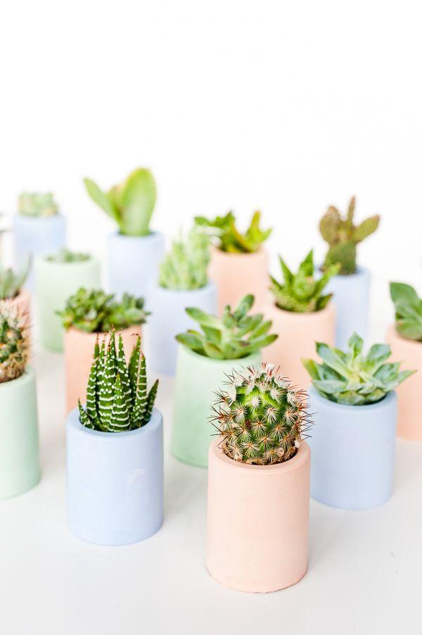 ~ DIY mini pastel planters ~