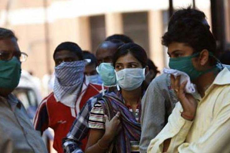 #Unos 600 muertos en la India por gripe porcina en 2017 - Prensa Latina: Prensa Latina Unos 600 muertos en la India por gripe porcina en…