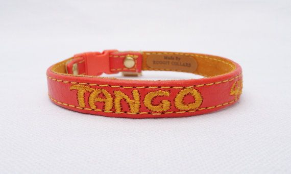 For Frisco! Personalized Leather Cat Collar with Breakaway by RUGGITCOLLARS