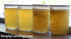 corn cob jelly in half pints