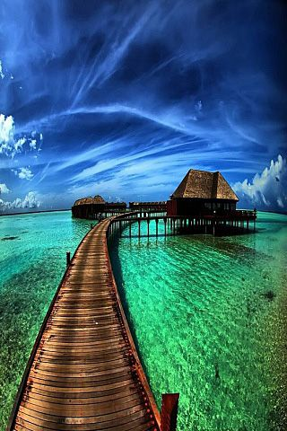 A pier in the caribbean sea.
