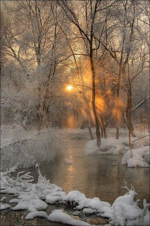 Winter - sunset