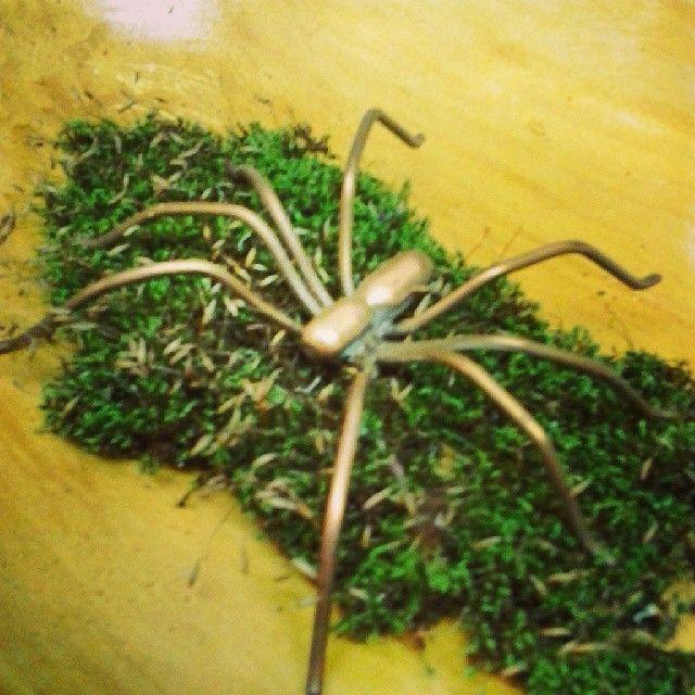 Spider presepe-copper sculpture by Malafola #malafola  #copper #copperart #sculpture #scultura #ragno #spider #rame #arte #arteinrame #design #artisan #artigianato #presepe #muschio #giftideas #idearegalo #homesweethome #homedecor