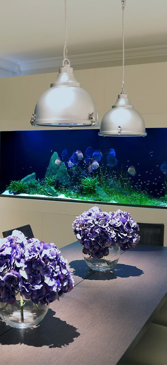 The custom aquarium was envisioned to contrast the creamy white tones and the shades of grey that are used throughout the kitchen / dining area.
