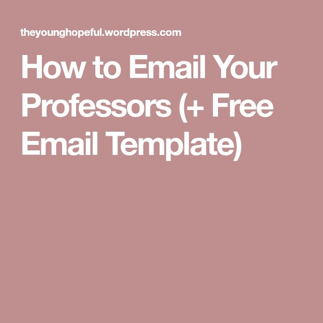 How to Email Your Professors (+ Free Email Template)