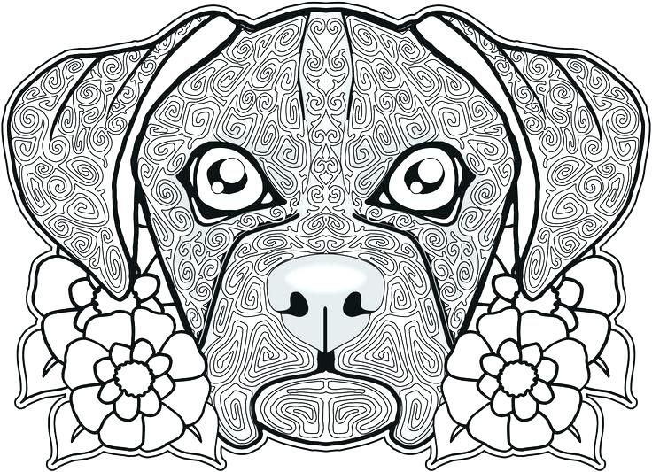 Sugar Skull Free Coloring Pages Gallery Skull Coloring Sheets
