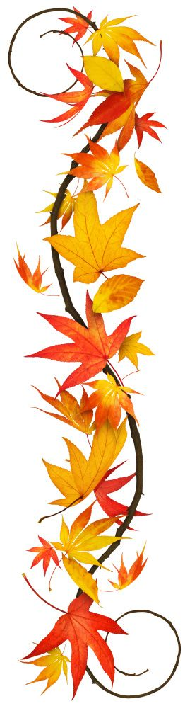 Fall Leaves Craft Idea