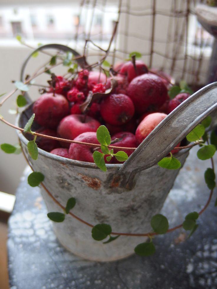 Keuken Decoratie Appel : Appel Decoraties op Pinterest – Appel Manden, Appel Krans en Potten