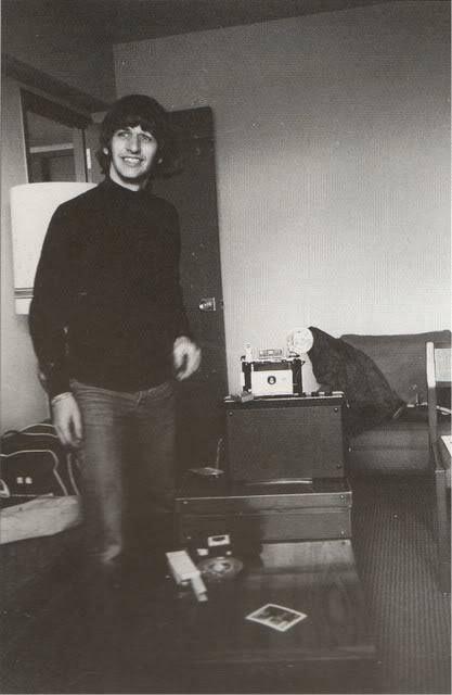Ringo at home