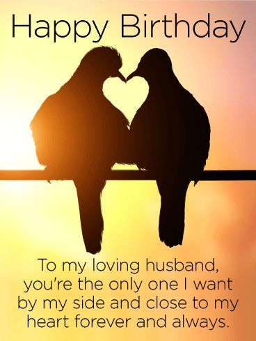 68 best birthday cards for husband images on pinterest happy to my loving husband happy birthday card two lovebirds perched side by side in bookmarktalkfo Images