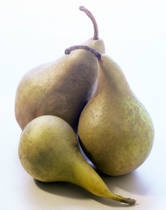 Pear Butter Recipe - what to do withall the pears from my father-in-law!