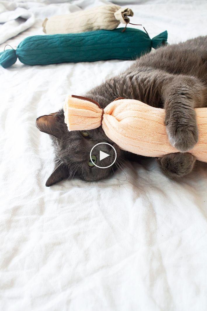 Wenn Sie diese DIY Katzenspielzeug machen, machen Sie Ihre glücklichste Katze auf dem Planete…