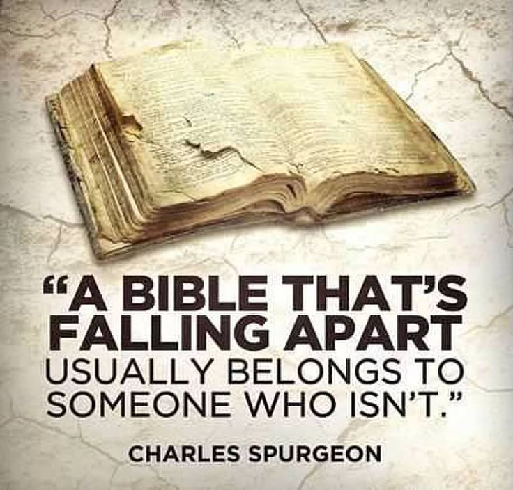 A Bible That's Falling Apart Usually Belongs To Someone