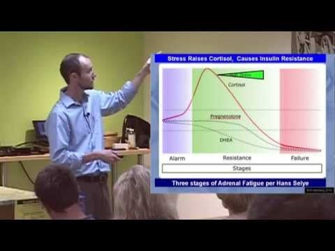 Adrenal Fatigue - How to Beat and Treat the Effects of Stress. Presented by Dr. Andrew Rostenberg - YouTube