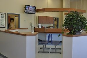 Our spacious reception area, with ample room to separate cats from dogs