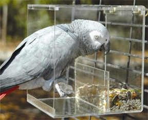 No-Mess Bird Feeder - Large  a need... because vacuuming everyday gets old #cockatiel